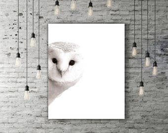 Cute Owl Decor, Nursery Woodland Art, Bird Print, Animal Wall Decor, Owl Gift, Woodland Printable Bird Art Print, Cute Poster, Owl Artwork