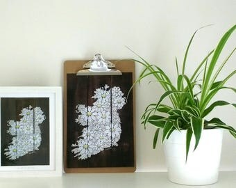 We are all daisies Ireland.  A5, A4 and A3 signed digital print of hand painted daisies on scorched reclaimed wood.