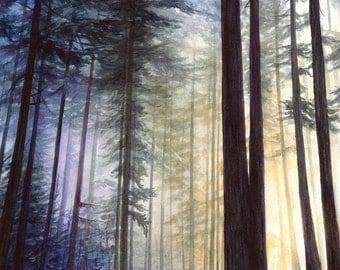 Print - Northwest sunrise watercolor, forest sunrise, woodland, northwest artwork, pnw art, Jacqueline Tribble, Pacific Northwest Print