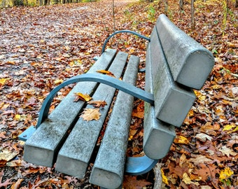 """Autumn Leaves Trail Photo, Bench Photo, Fall Leaves, Fall Decor, Trail Through Woods, Leaf Photo, Fall Leaves """"Bench on a Fall Trail"""""""