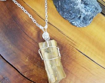 Petrified wood necklace, jasperized wood, petrified wood pendant, wire wrap jewelry, wire wrapped jewelry, Fossilized wood, rock amulet