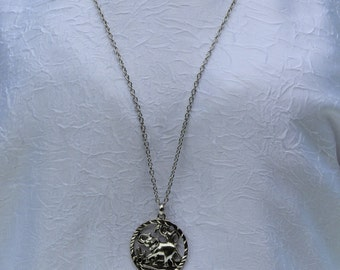 Metallic chain necklace with pendant