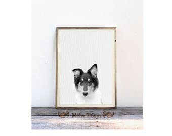 Collie Pup Peekaboo Print, Puppy Black And White Photography, Baby Dog Large Poster, Nursery Dog Art, Baby Animal Poster