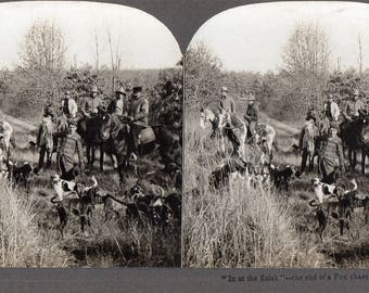 Rare Stereoview of a Fox Hunt, Man Holding Fox with Horses and Dogs, Real Stereoview Photo