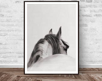 Horse Print, Horse Decor, Horse Art, Horse Photo Art, Art Modern, Animal Print, Animal Decor, Wild Animal, Wall Art, Instant Download