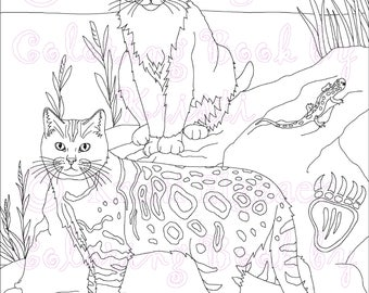 Adult Coloring Page, Cats, Cat Coloring Page, Fantasy Coloring, Printable Coloring Page, Digital Download, Coloring Book By Kristi