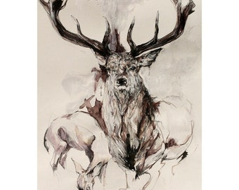 Majestic Stag