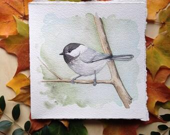 Carolina Chickadee - Original Watercolor Painting