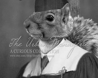 Funny Gift for Graduate, Squirrel Print, Funny Graduation Gift, Funny Squirrel Art (#1030)