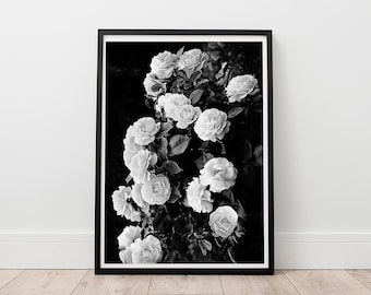 Rose Print - Roses Photography, Black and White Wall Art, Boho home decor, Floral Prints, Instant download, Garden Rose Print, Chic Art