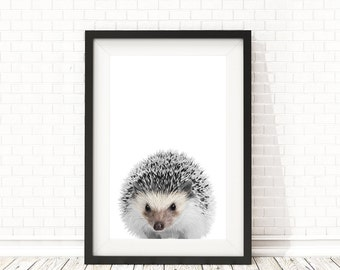 Hedgehog Print, PRINTABLE wall art, Hedgehog poster, Nursery Animal Wall Art, Black and white animals, Nursery Animal Decor, Nursery decor