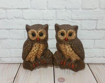 Vintage Owls Wall Hanging Set of 2