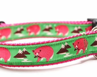 Bears in Hot Pink Dog Collar / Hot Pink and Lime Dog Collar / Magenta Bears