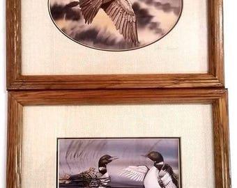 Steve Leonardi Mallard Ducks and Goose Matte Prints Wildlife Artist Pictures