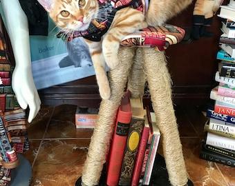 Books Pet Harness