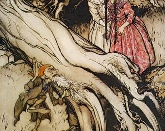 Snowdrop Beard Caught,  Arthur Rackham, Vinatge Art Print
