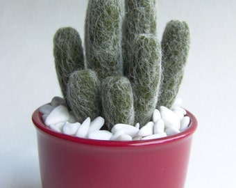Needle Felted Cactus - Cactus - Felted Plant - Potted Plant
