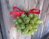 3.5 Inch Holiday Hops Ball, Hop Mistletoe Ball, Beer Ornament, Hops Ornament, Christmas Hops decoration  HoppleToe