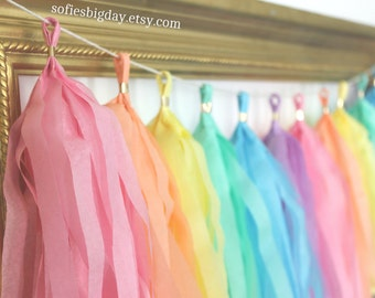 Pastel Tassel Garland -Unicorn Garland- Tassel Garland -pastel color tassel garland easter garland-pastel rainbow-photo backdrop