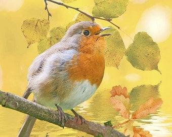 bird print, robin print, wildlife art, wildlife print, bird art, wildlife wall art, digital print, home décor, autumn print, nature print