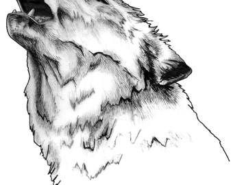 White wolf pen and ink print
