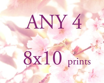 Fine Art Prints, Photography Prints, Print Sets, Botanical Print, Any 4 8x10 Prints- Fine Art Photography Prints Set Save 25%