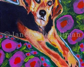 "Beagle Mix - 8x10"" Print of Original Acrylic Dog Portrait Painting"