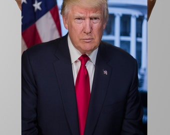 President Donald Trump Poster (PRESIDENTIAL-13)