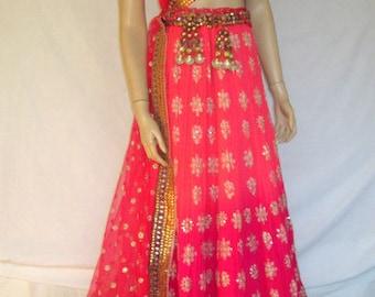 Magnificently Embroidered Sari and Matching Lehenga