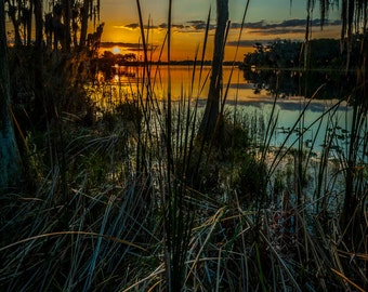 "Old Florida-  ""Florida Lake Sunset"" Fine Art Color Photograph  (16"" x 27"" Print on 24"" x 36"" Archival Board and Mat)(No Frame)"