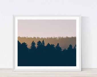 forest art, forest wall art, forest photography, forest print, landscape, Digital Prints, forest photography, trees, Landscape Photography