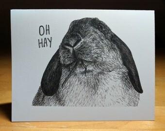 Oh Hay! Rabbit Card