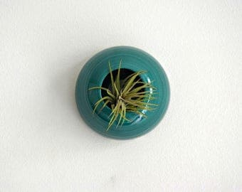 Wall planter air plant home decor ceramic green water hanging vase for tillandsia Sea Creatures Jellyfish model (plant not included)