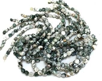 "Tree Agate nugget beads polished graduated pebble gemstones 15.5"" strand"