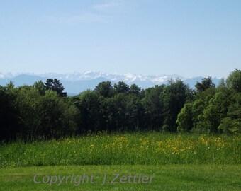 Spring, Bavarian Landscape, Germany, Photo Print, Alps