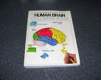 Human Brain Coloring Book  Adult Coloring Book  Brain Anatomy 1985 Pb Vintage
