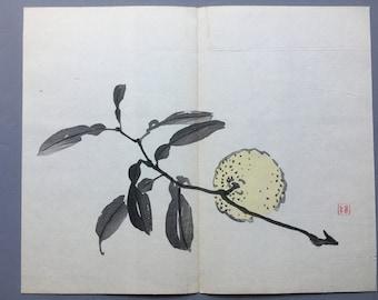 1906, Japanese antique woodblock print, Imao Keinen.
