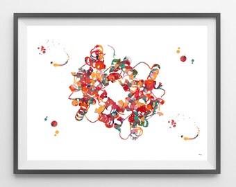 Hemoglobin watercolor print blood cells hemoglobin poster anatomy art heme group painting print wall decor biology art hemoglobin [1000]