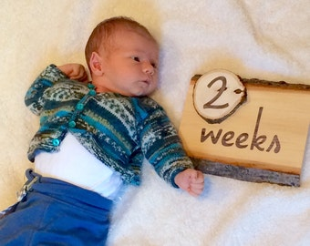 Woodland Milestone, Milestone Wood Sign, Baby Age Blocks, Newborn Photo Prop, Week Month Year Milestone, Age Wood Signs, Wood Slice