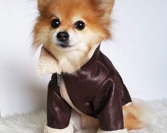 Dog Brown Leather Rider Jacket, puppy clothes, pet hoodies, small dogs jumpers, luxury dog jackets, puppy coats, winter sweater, dog hoodie