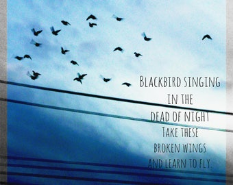 Blackbird Photograph With Quote 8x10 DIGITAL DOWNLOAD