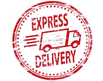 Express shipping / Express Delivery / Fast order delivery