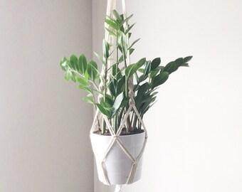 Cotton plant hanger + white plant pot