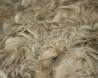Schoonebeker raw fleece