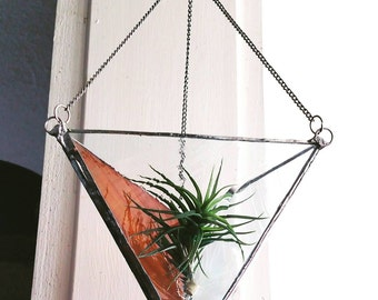 Hanging Air Plant Terrarium, clear and gold glass, with air plant