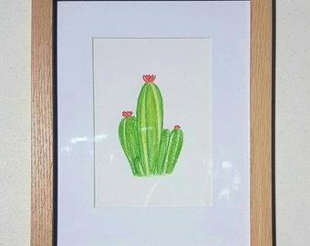 Flowering Cactus - Watercolor Pencil - Original