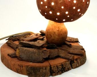 Decoration gourd lamp boletus