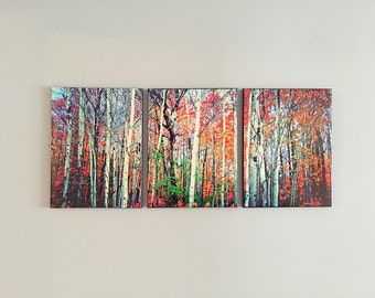 Split canvas birch trees