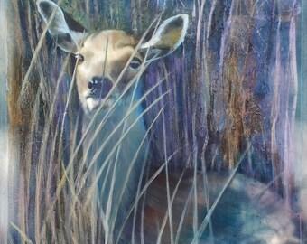 Deer at Arne