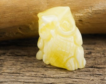 Amber carving of OWL | Carved Baltic amber | Unique gift | Rich butterscotch amber | Owl statue | Natural Baltic AMBER AV0333